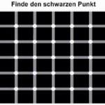 Finde den schwarzen Punkt