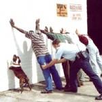 Hund bei Polizeikontrolle
